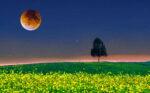 2021 Май Астрологический лунный календарь